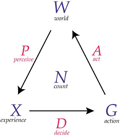 conscious-agent-model
